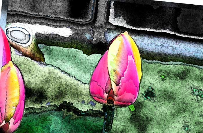 Digital Photo Painting 101 – 3rd grade through high school student art